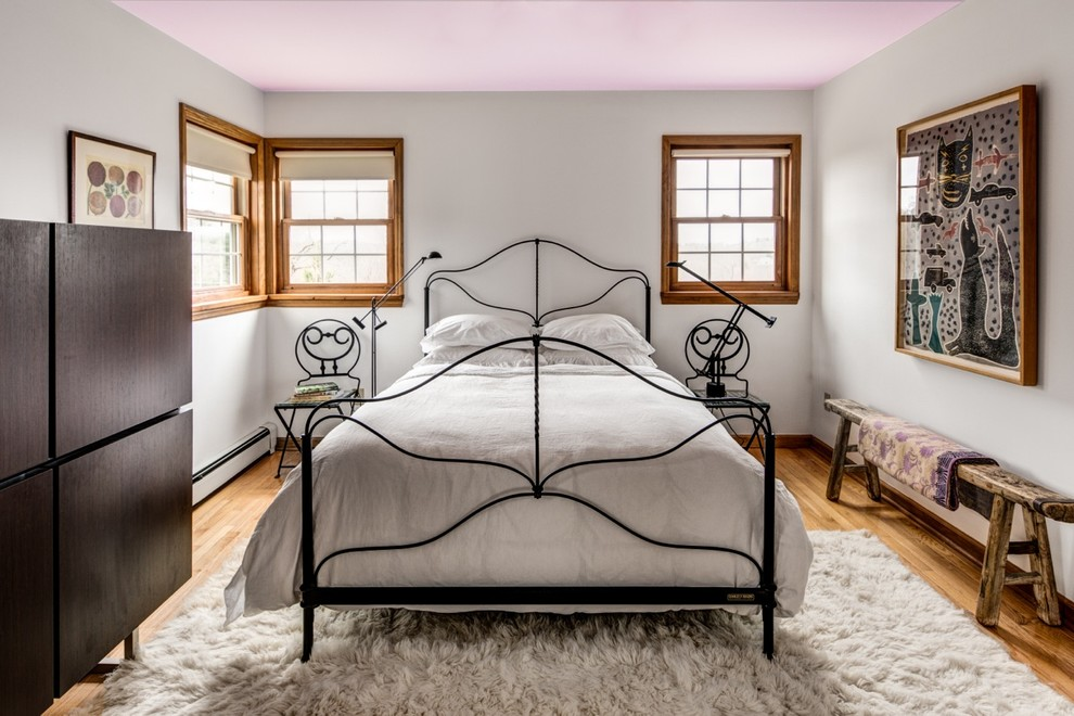 https://www.houzz.com/photos/white-bedroom-with-custom-lilac-ceiling-eclectic-bedroom-boston-phvw-vp~3729489